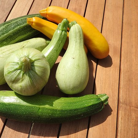 Courgette Gemengd (zaad)